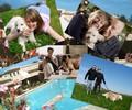 location calanques, garde d'animaux à domicile